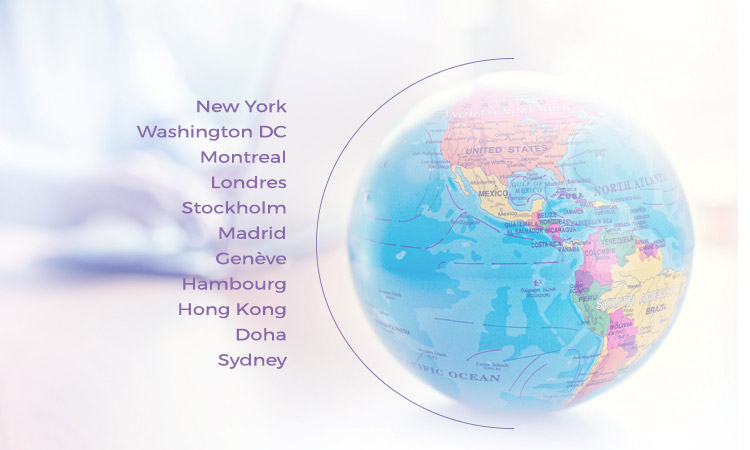 Enza Consulting: An international presence
